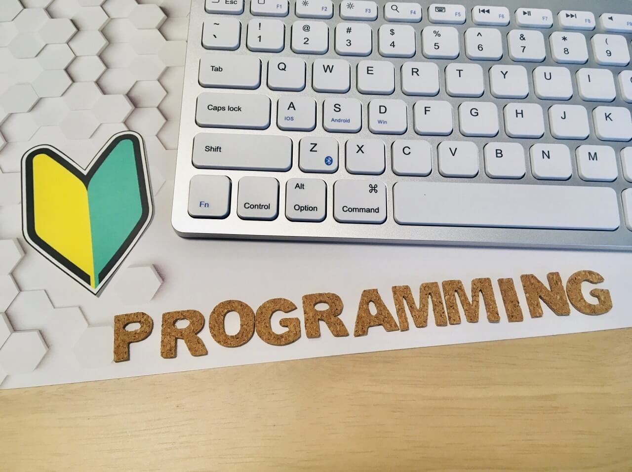 TechGardenSchoolはどんなプログラミングスクール?【特長など】